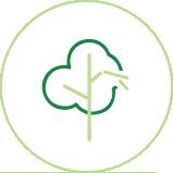 tree_icon